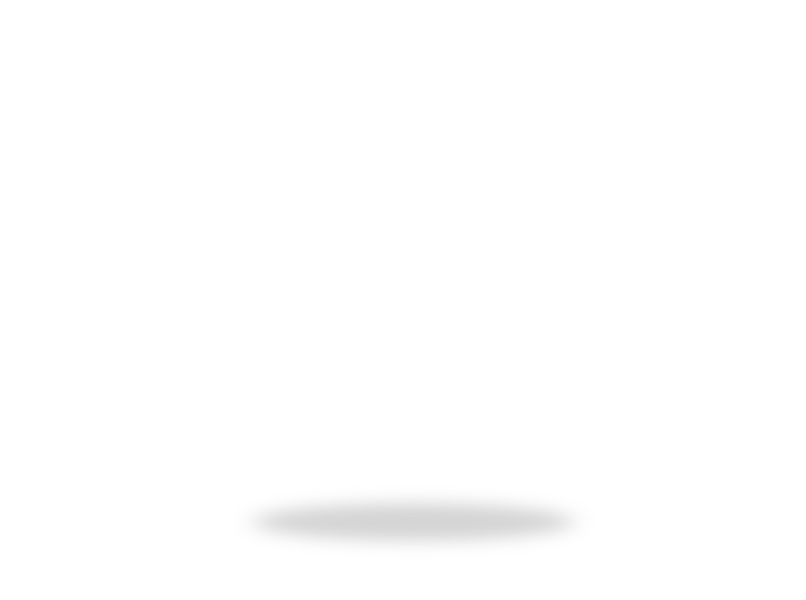 zettit-logo-after-intro-2020-1-2